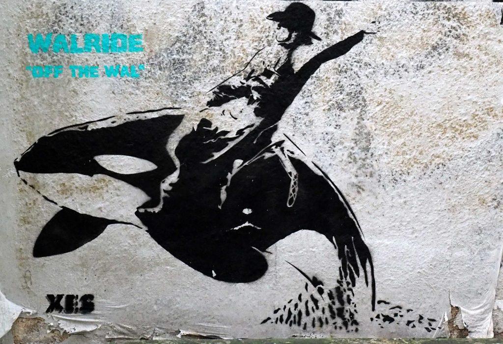 ein Cowboy reitet einen Wal