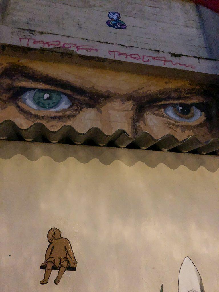 Die Augen von David Bowie