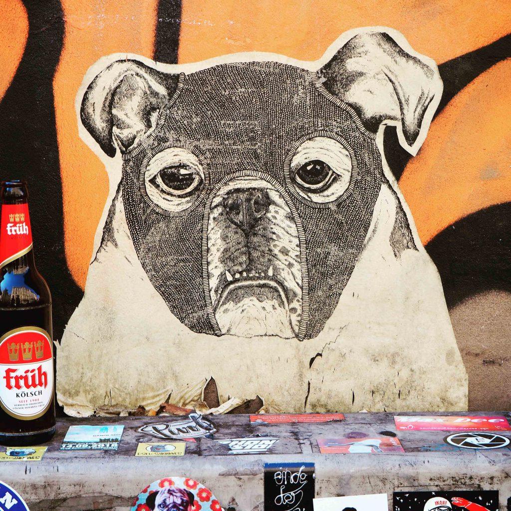 Hund und Kölschflasche